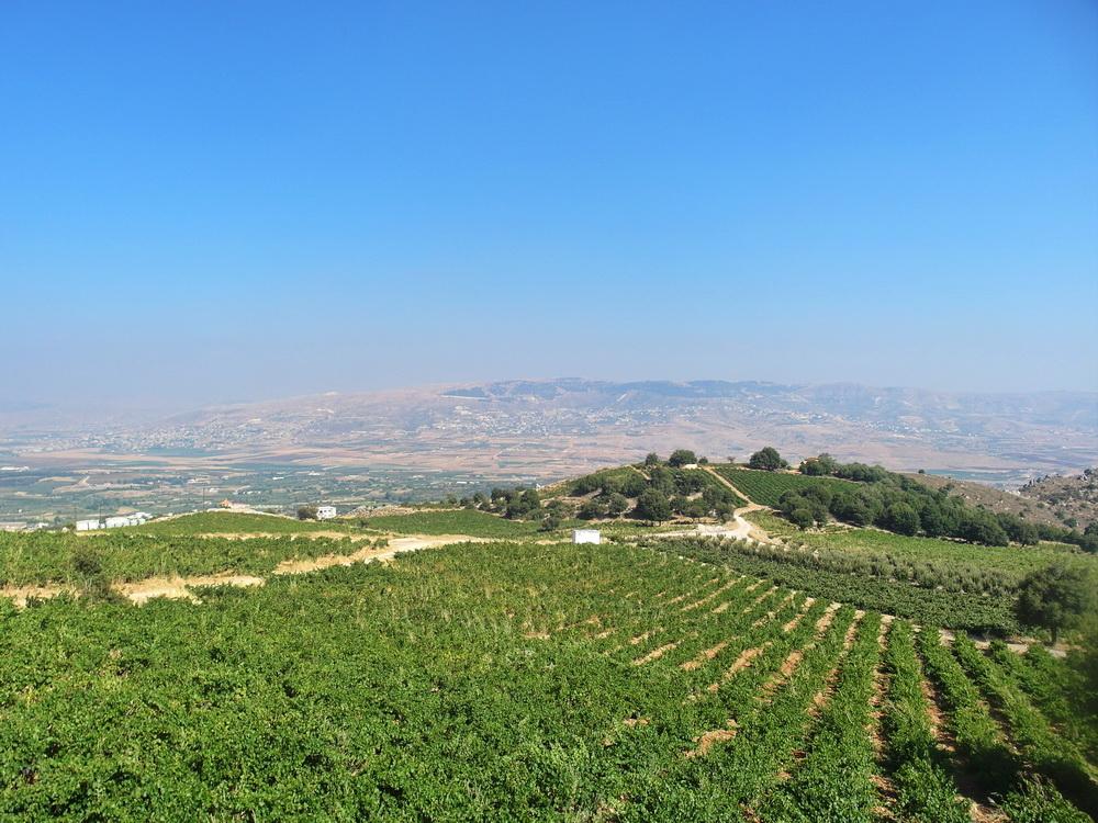 Blick auf Bekaa-Ebene